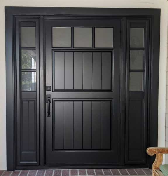 Sidelights door
